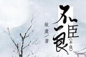 《不良臣》广播剧百度云网盘下载-时光屋