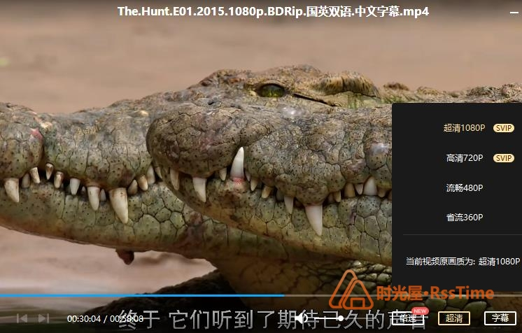 BBC纪录片《猎捕 The Hunt 》[2015/1080P][百度云网盘下载]-时光屋