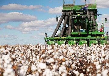 澳大利亚国家定位错误#棉花将失去中国市场#-时光屋