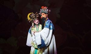 戏曲《中国京剧有声大考》无损30张CD百度云网盘下载-时光屋