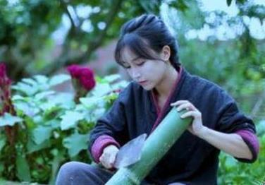 《网红李子柒》视频百度云网盘下载-时光屋