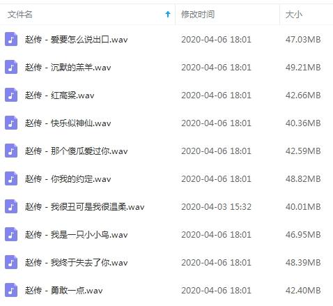 赵传无损歌曲[百度云网盘]免费下载-时光屋