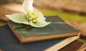 《经典名著》100本有声阅读音频百度云网盘下载-时光屋
