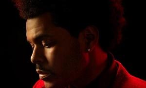 The Weeknd《The Highlights (Explicit)》专辑百度云网盘-时光屋